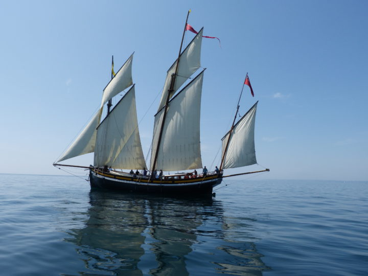 Grayhound Lugger
