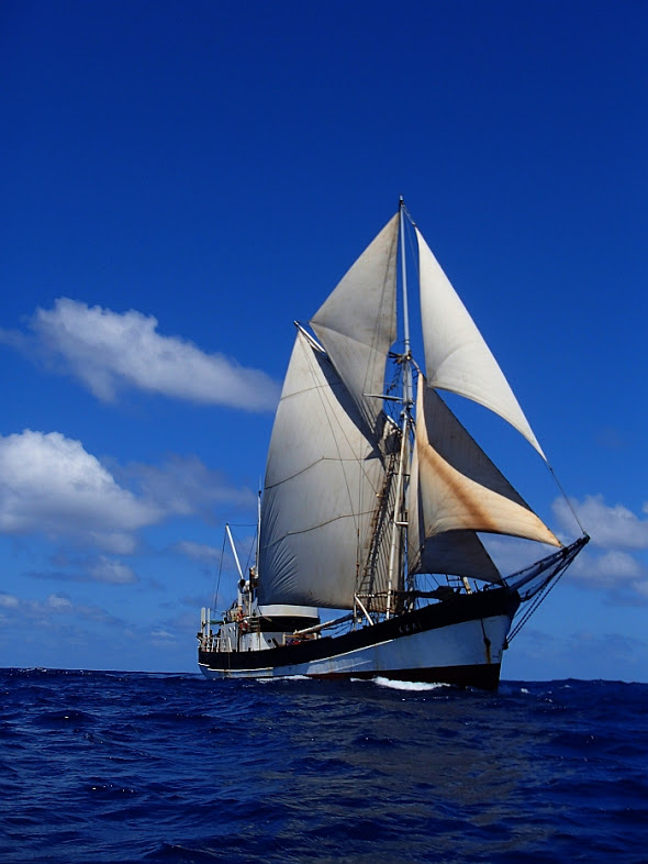 sailing vessel kwai new dawn traders